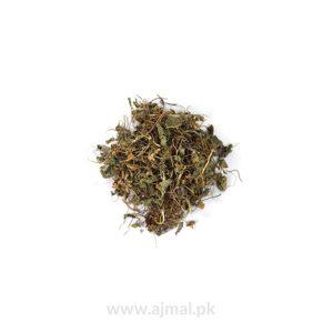 gul-banfasha(Wood Violet)