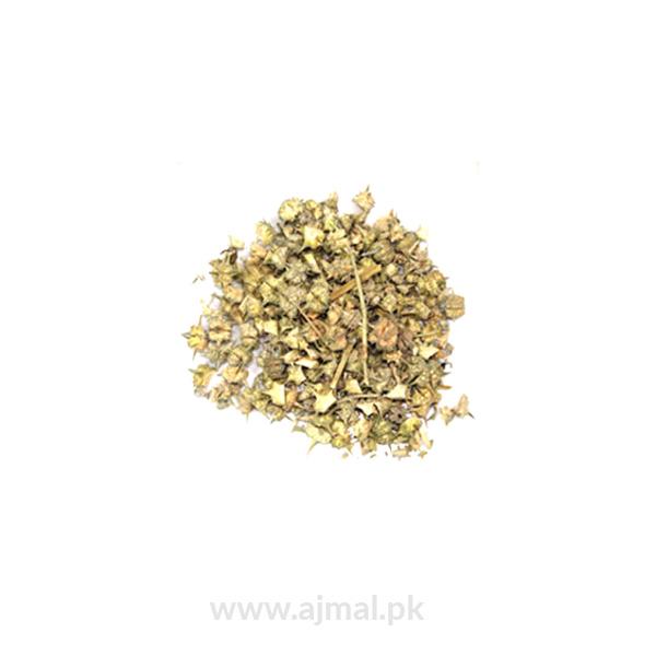 Khar e khasak(small caltrop)