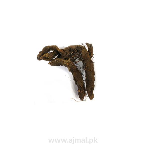 anjbar (Knotgrass Root)