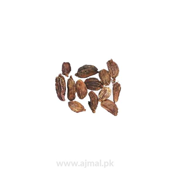 Large Cardamom (Elaichi Kalan)