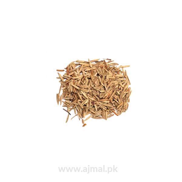 kurchi(indarjo talkh)