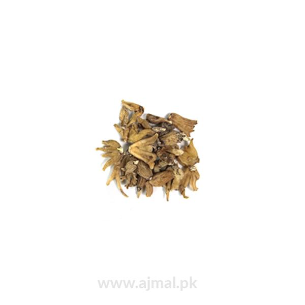 salab panja (Dactylorhiza)
