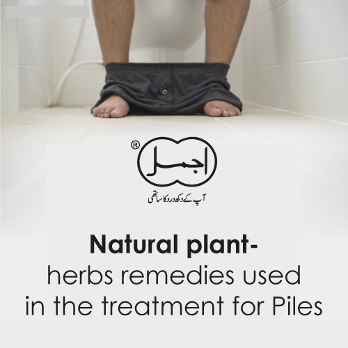 Natural plant- herbs remedies used in the treatment for Piles